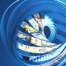 Europack Euromanut CFIA image